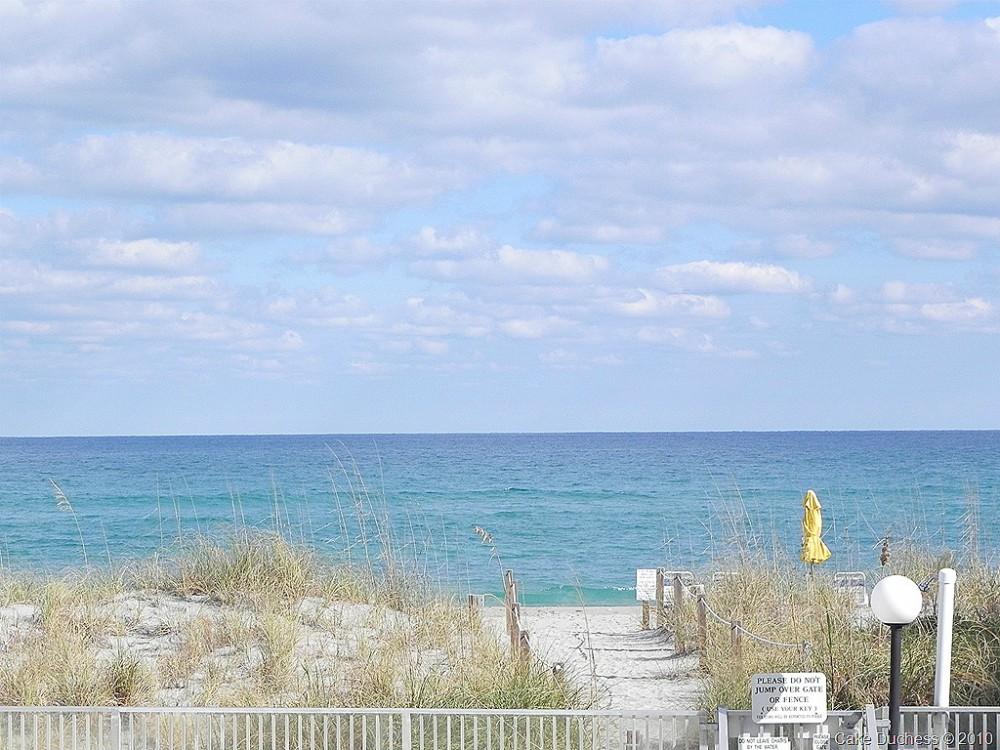 image of a beach scene
