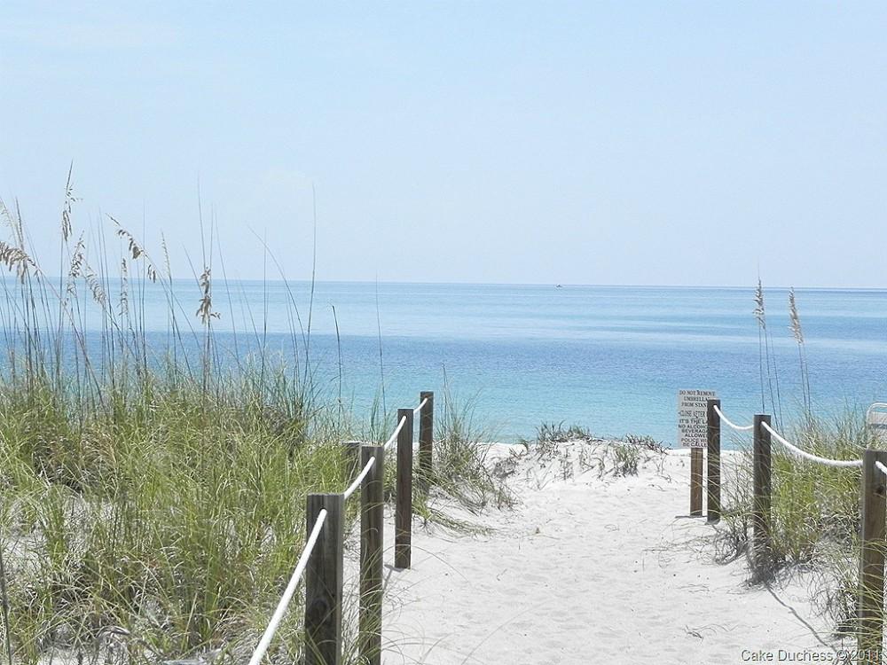 image of ocean scene