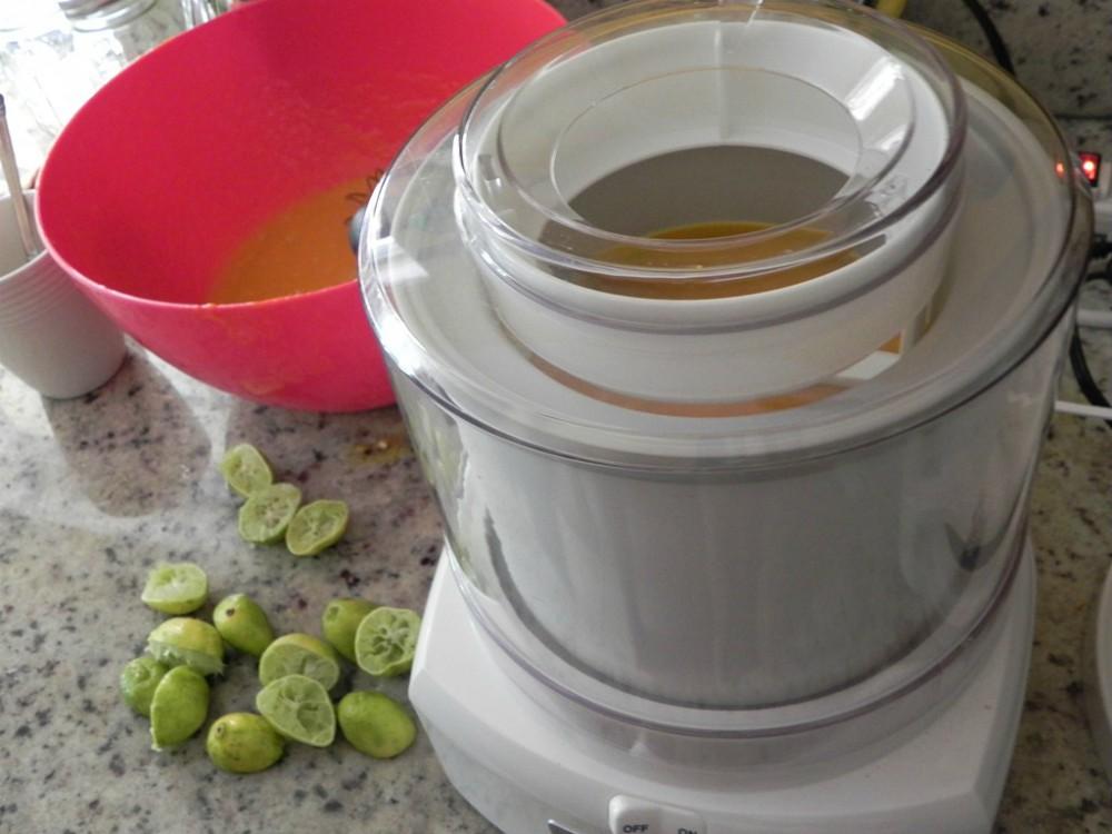 image of making mango sorbet