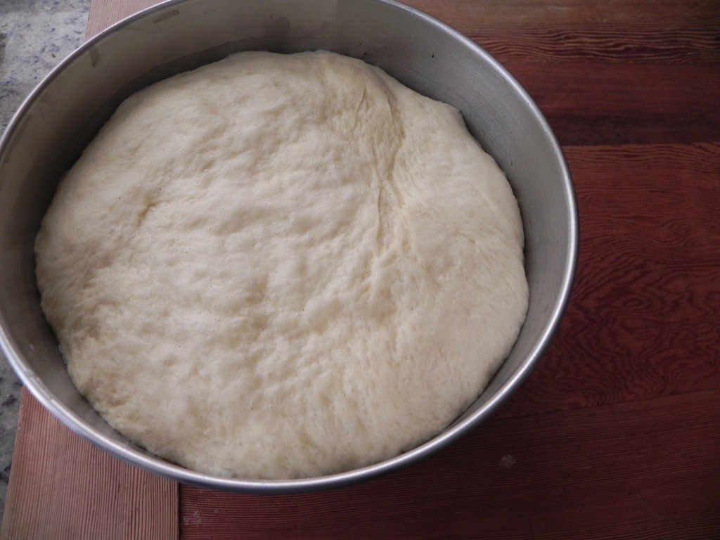 overhead image of dough rising in bowl