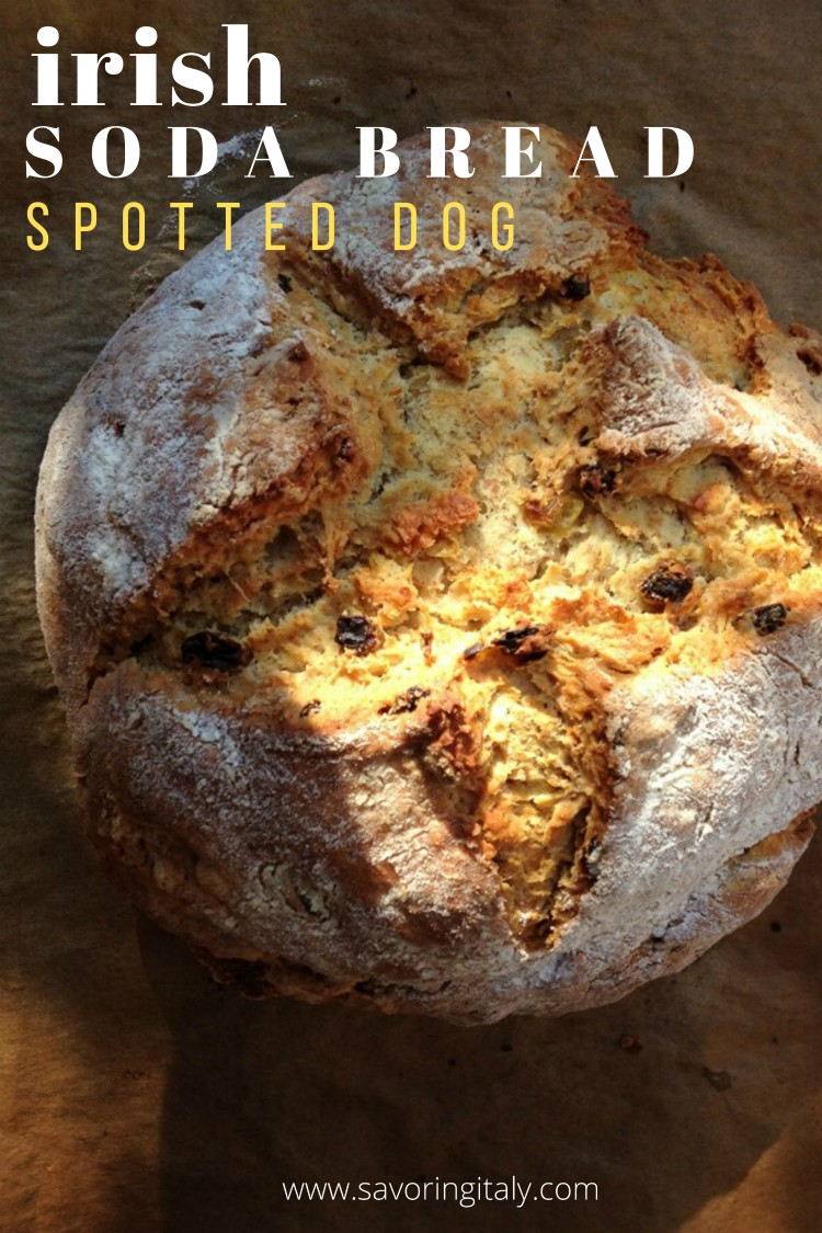 overhead image of spotted dog irish soda bread