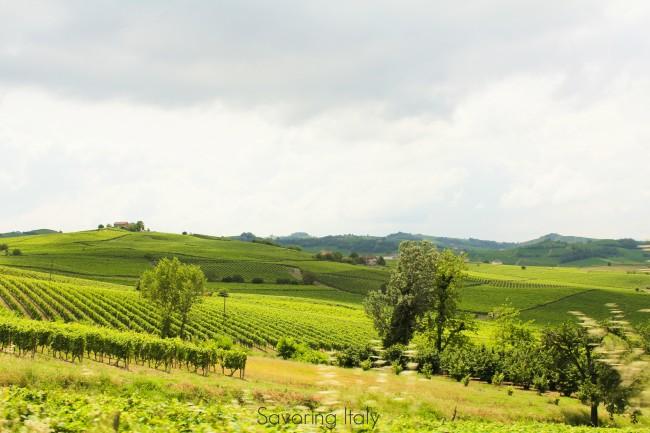 Piedmont photo essay: a visit to Cascina Garitina with Gianluca Morino