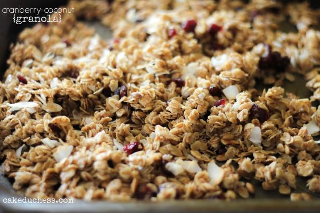 Cranberry-Coconut Granola