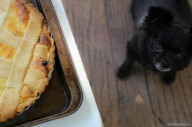 Sicilian ricotta pie | cakeduchess