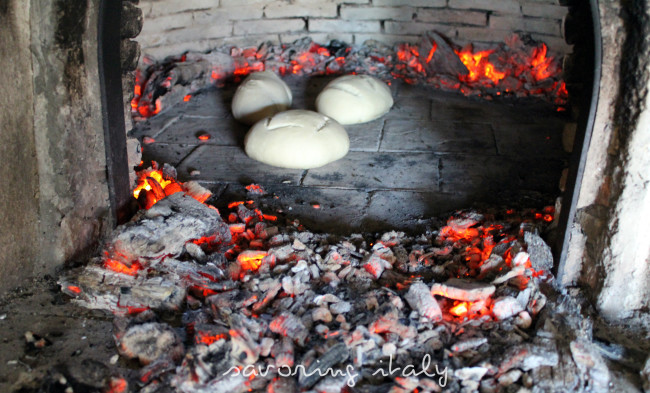 Making Pane Calabrese in Sicily